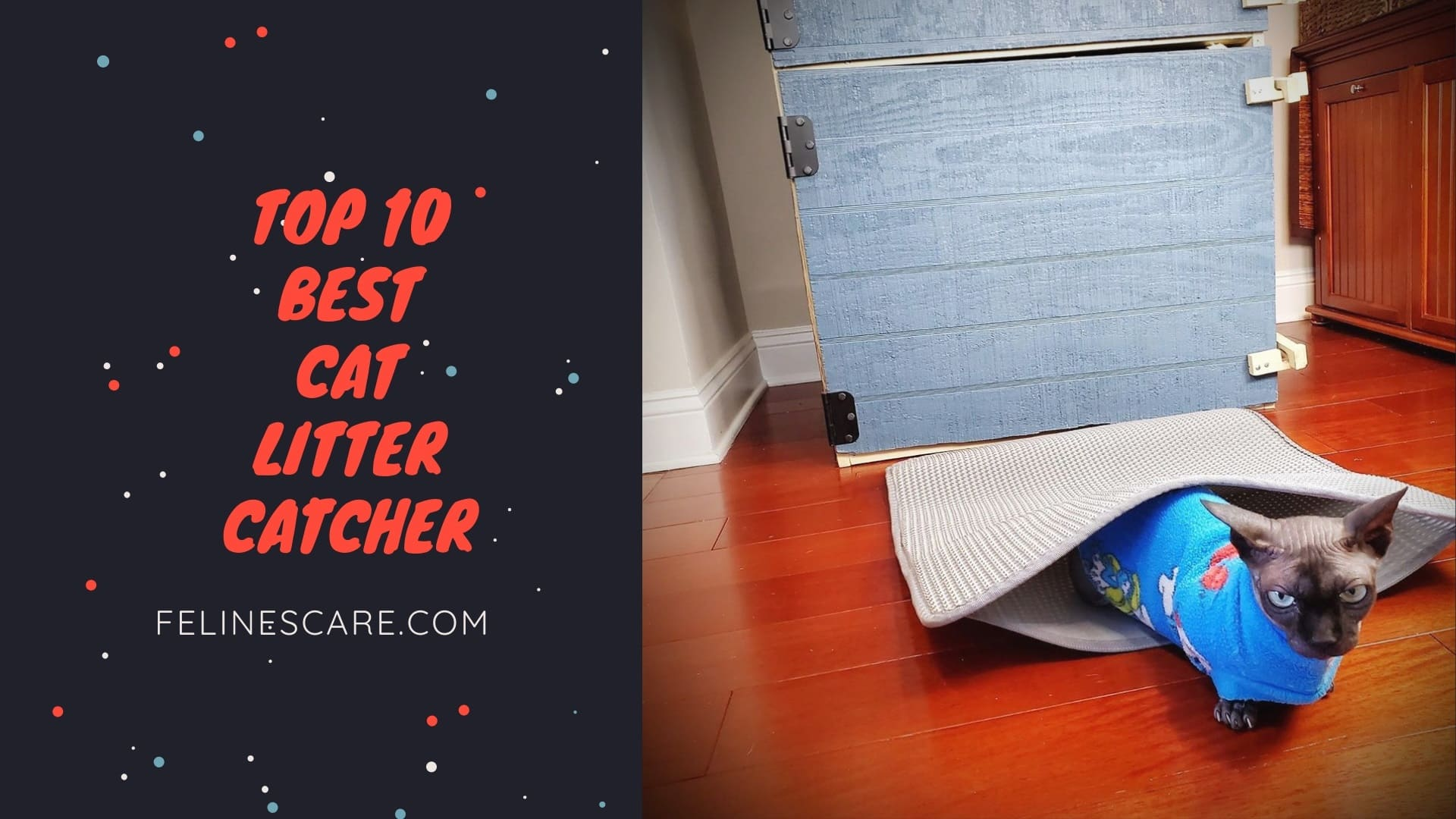 Top 10 Best Cat Litter Catcher [Updated December 2020]